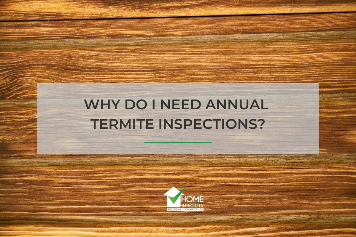 Why do I Need Annual Termite Inspections