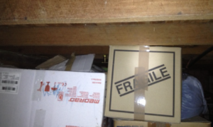 Don't store cardboard in sub floor areas