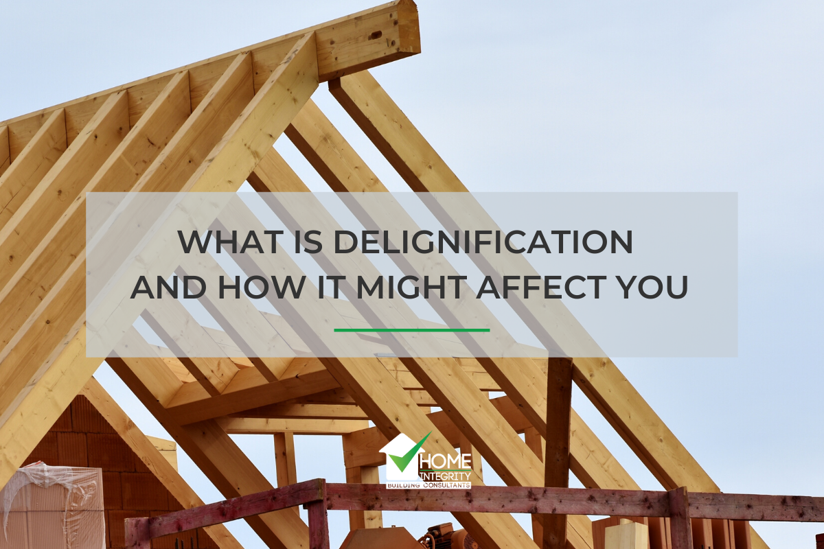What is Delignification