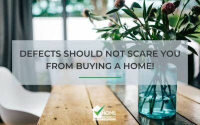 Defects Should Not Scare You from Buying a Home